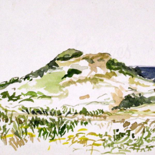 Pilgrim Heights Dunes