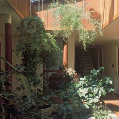 View from atrium courtyard to library and back stair